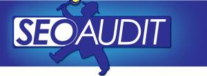 بررسی دقیق بهینه سازی موتور های جست و جو SEO Audit_seorob_ir