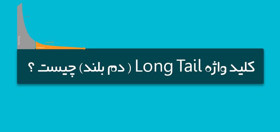 کلید واژه Long Tail ( دم بلند) چیست ؟